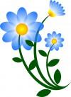 nature-flower-blue-motif-800px.jpg